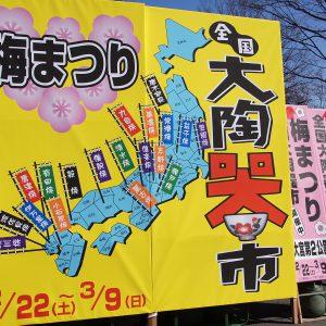 埼玉レポート「たまレポっ!」<br>第2回~東風吹かば匂ひをこせよ梅の花♪~