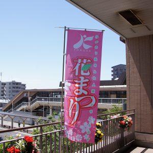 埼玉レポート「たまレポっ!」<br>第8回~花より団子?団子より花?~