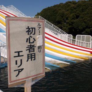 季節外れに話題を攫っている埼玉各地のプール 埼玉ブルース第二十六回